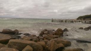 Afternoon swim, Augusta
